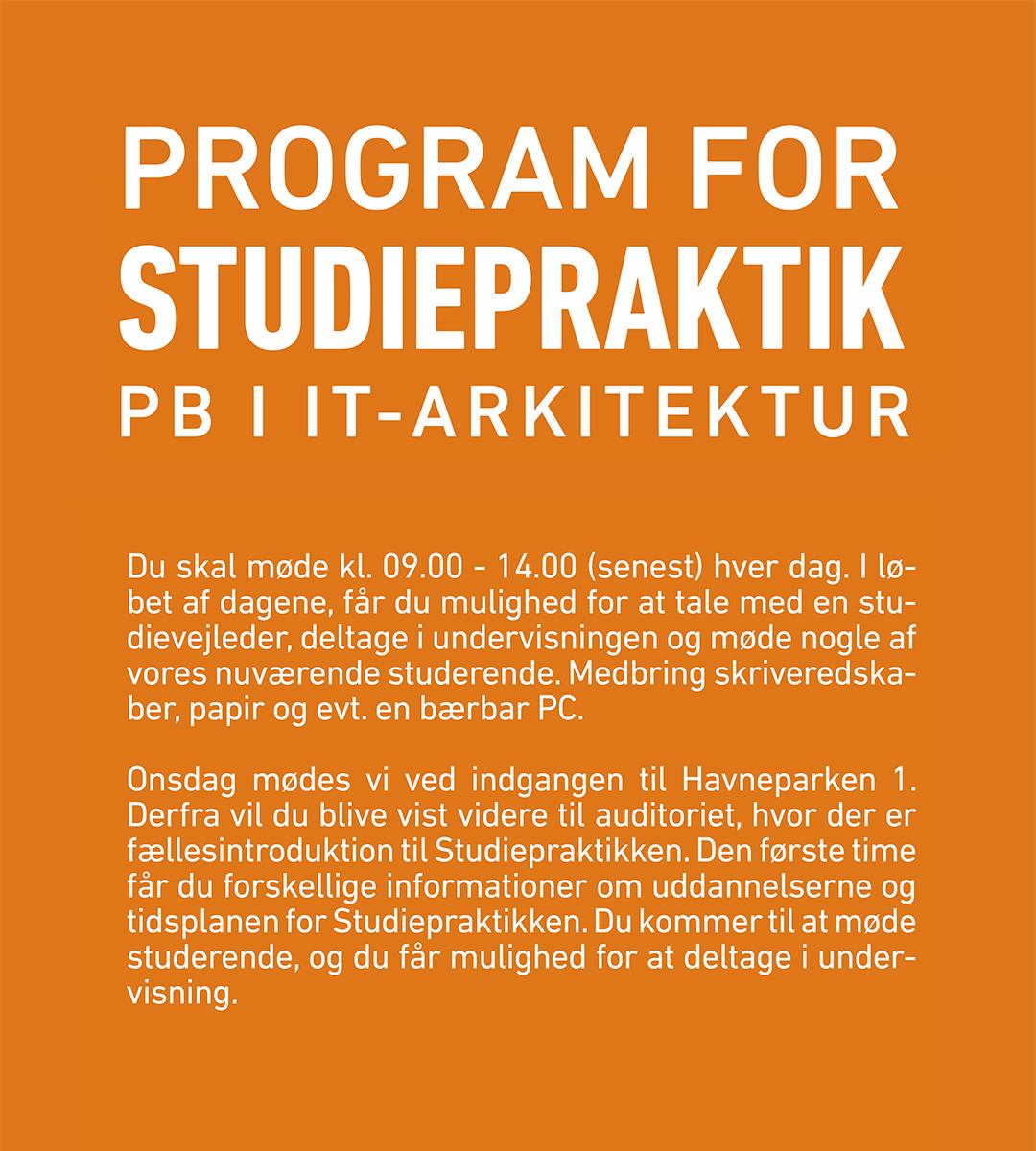 Program for studiepraktik for It-Arkitetktur.